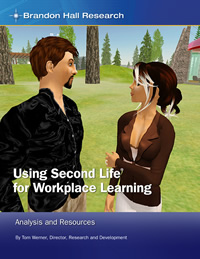 Using Second Life® for Workplace Learning: Analysis and Resource